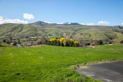 Wenatchee Residential Lots & Land For Sale: Lot 5 Diede Hills Ln.