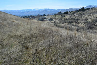Wenatchee Residential Lots & Land For Sale: 3833 Buck Haven