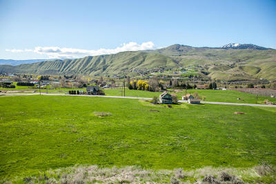 Wenatchee Residential Lots & Land For Sale: Lot 12 Diede Hills Ln