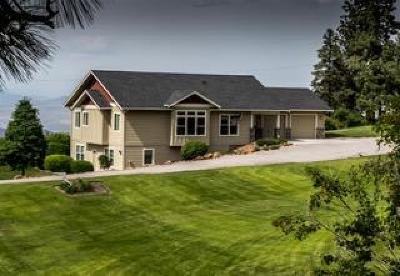 Wenatchee Single Family Home For Sale: 6422 Stemilt Loop Road