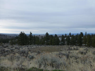 East Wenatchee Residential Lots & Land For Sale: 402 Wild Turkey Rd
