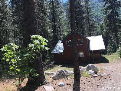 Entiat Single Family Home For Sale: 18075 Entiat River Rd