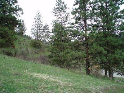 Cashmere Residential Lots & Land For Sale: 4689 Brisky Canyon Rd