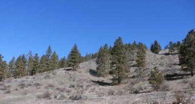 Cashmere Residential Lots & Land For Sale: 4745 Brisky Canyon Rd