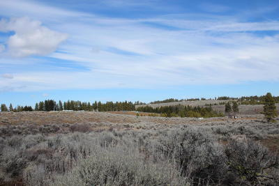 East Wenatchee Residential Lots & Land For Sale: 205 Sagebrush Hill Rd