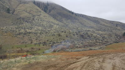 Wenatchee Residential Lots & Land For Sale: 1409 Pitcher Canyon Rd