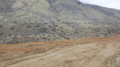Wenatchee Residential Lots & Land For Sale: 1453 Pitcher Canyon Rd