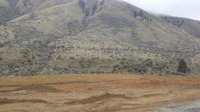 Wenatchee Residential Lots & Land For Sale: 1497 Pitcher Canyon Rd