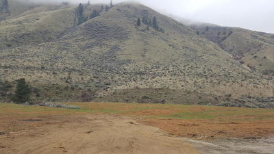 Wenatchee Residential Lots & Land For Sale: 1541 Pitcher Canyon Rd