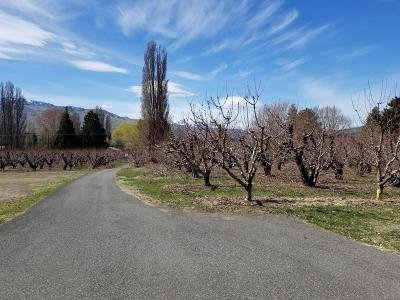 East Wenatchee Residential Lots & Land For Sale: 3227 NW Cascade Ave