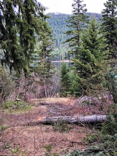 Residential Lots & Land For Sale: 14164 Idlewild Rd