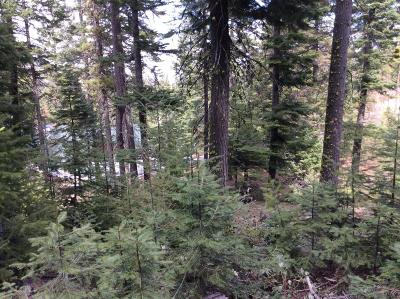 Wenatchee Residential Lots & Land For Sale: 6722 Forest Ridge Dr