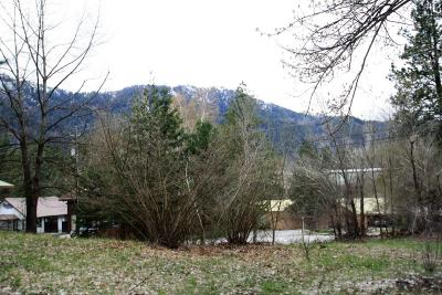 Residential Lots & Land For Sale: 9876 Mountain Home Rd