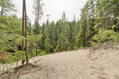 Leavenworth Residential Lots & Land For Sale: 180 Vine Maple Ln