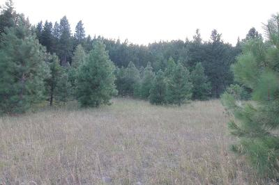Leavenworth Residential Lots & Land For Sale: Nna River Road