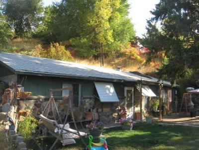 Entiat Single Family Home For Sale: 3222 Entiat River Road