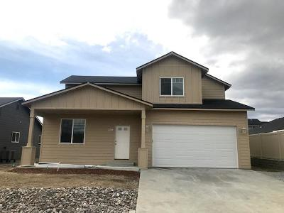East Wenatchee, Rock Island, Orondo Single Family Home For Sale: 228 S Nevada
