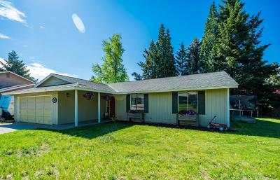 East Wenatchee, Rock Island, Orondo Single Family Home For Sale: 1300 Easthills Terrace