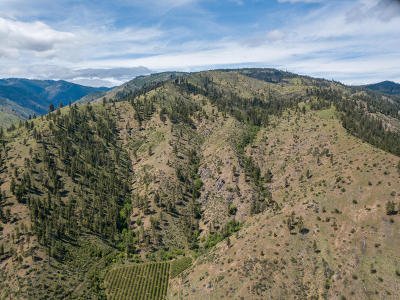 Entiat Residential Lots & Land For Sale: Nna Entiat River Rd