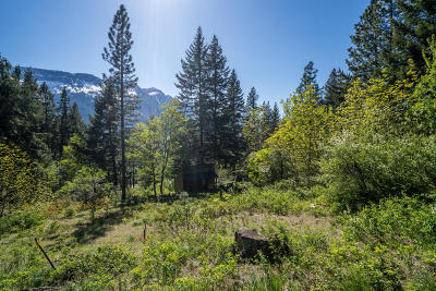 Leavenworth Residential Lots & Land For Sale: Nna Lake Wenatchee Hwy