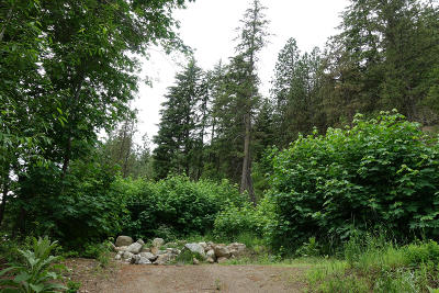 Leavenworth Residential Lots & Land For Sale: Nna Canal Rd