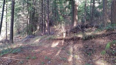 Leavenworth Residential Lots & Land For Sale: 16965* Chumstick Hwy.