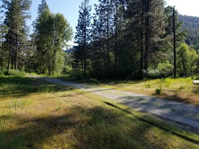Residential Lots & Land For Sale: Nna Chumstick Hwy.