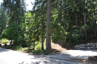Leavenworth WA Residential Lots & Land For Sale: $79,000
