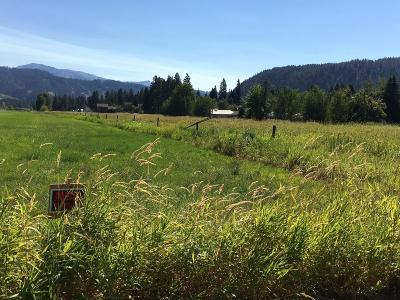 Leavenworth WA Residential Lots & Land For Sale: $139,900