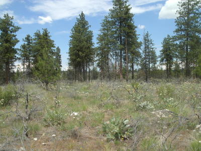 Chelan Residential Lots & Land For Sale: Nna Evergreen Camp Road