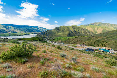 Entiat Residential Lots & Land For Sale: 9984 Saska Way