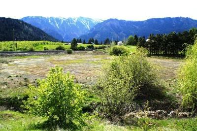 Leavenworth Residential Lots & Land For Sale: Nna North Rd