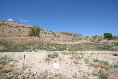 Suncrest Residential Lots & Land For Sale: 1143 Sunny Brooke Ln