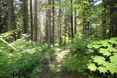 Residential Lots & Land For Sale: 18960 Us Hwy 2