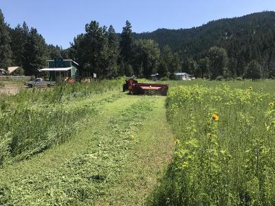 Leavenworth Farm & Ranch For Sale: 11349 Chumstick