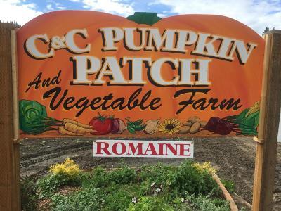 Leavenworth Farm & Ranch For Sale: 11393 Chumstick