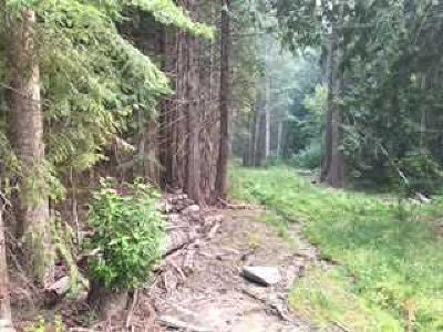 Leavenworth Residential Lots & Land For Sale: Nna Brown St