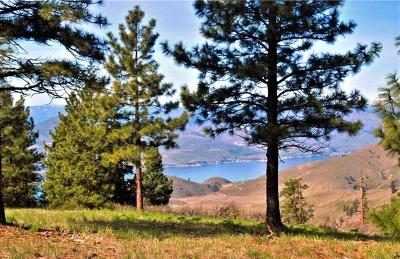 Chelan Residential Lots & Land For Sale: 1114 Blazing Star Ln