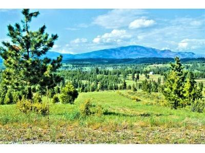 Chelan Residential Lots & Land For Sale