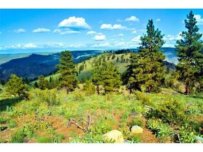 Chelan Residential Lots & Land For Sale: 1150 Albers Dr