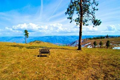 Chelan Residential Lots & Land For Sale: 1150 Blazing Star Ln