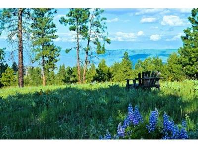 Chelan Residential Lots & Land For Sale: 551 Blazing Star Ln