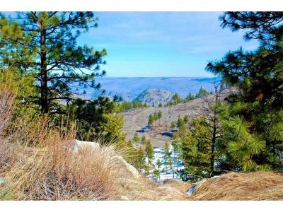 Chelan Residential Lots & Land For Sale: 1442 Cagle Gulch Rd