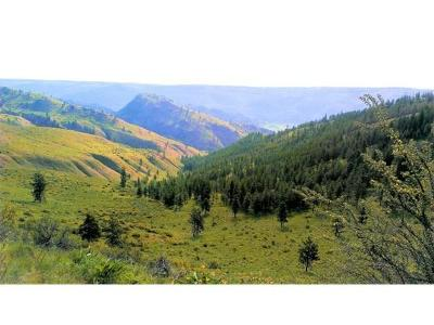 Chelan Residential Lots & Land For Sale: 1440 Union Valley Rd