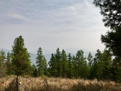 Leavenworth Residential Lots & Land For Sale: Nna Mountain Home Rd