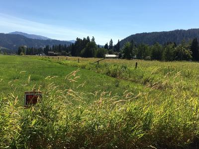 Leavenworth Residential Lots & Land For Sale: Lot 18 Pinegrass St
