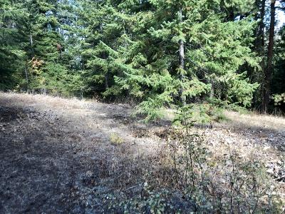 East Wenatchee Residential Lots & Land For Sale: 417/419/42 Hummingbird Ln