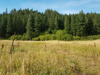 Leavenworth Residential Lots & Land For Sale: 18230 Chumstick Hwy