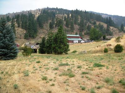 Cashmere Residential Lots & Land For Sale: 91xx Nahahum Canyon Rd