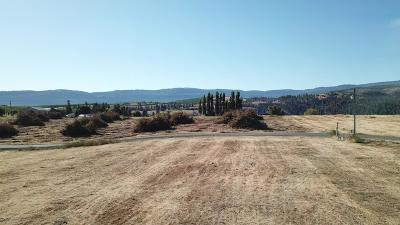 Wenatchee Residential Lots & Land For Sale: 4180 Jim Smith Rd
